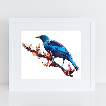 Tui on Harakeke  watercolour print