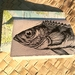 Fish card with Atlas envelope