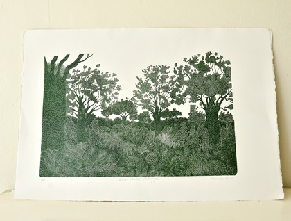 Kauri Forest, Hokianga print by Allan Gale
