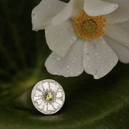 Yellow sapphire Mt Cook buttercup ring, hand engraved