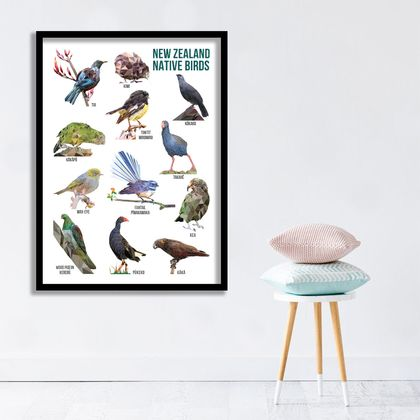New Zealand Native Birds Poster