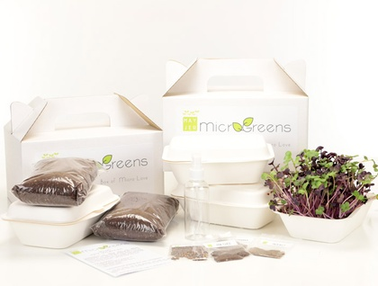Deluxe Home Growing Kit