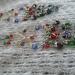 Multicolour long beaded chandelier earrings