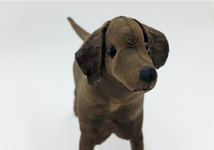 Labrador Dog - SALE