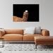 "Llama Drama photographic wall art print 8x12"""